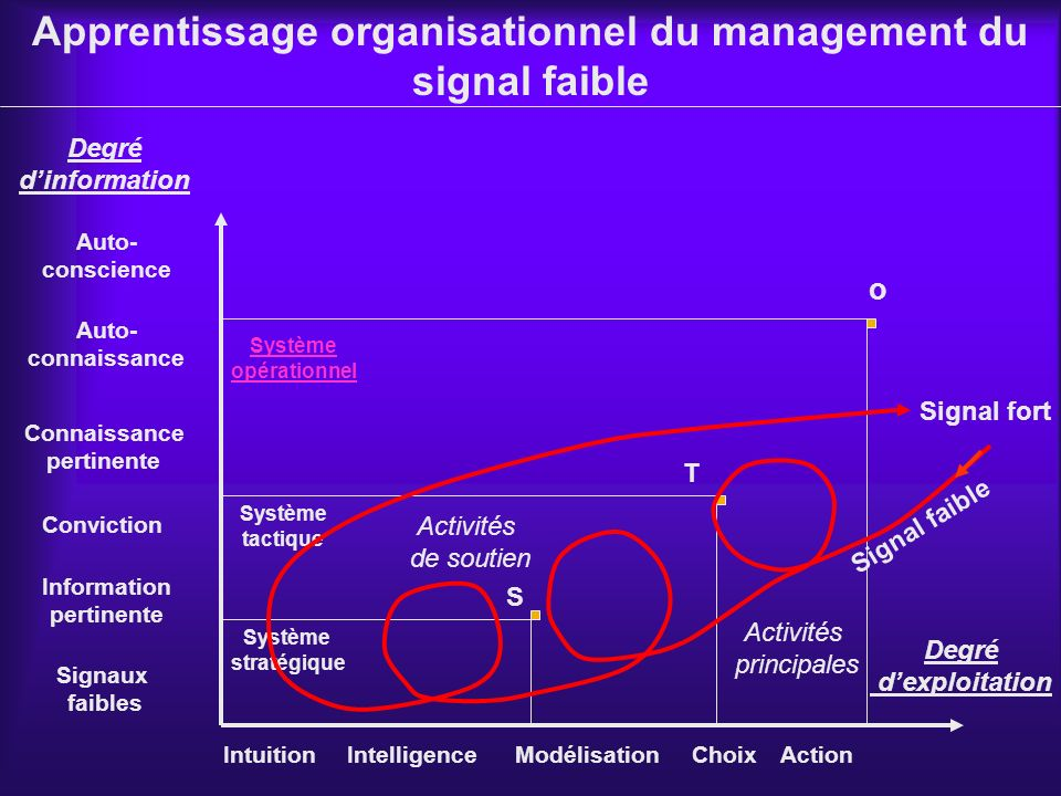 Apprentissage organisationnel du management du signal faible