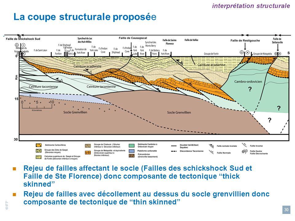 La coupe structurale proposée