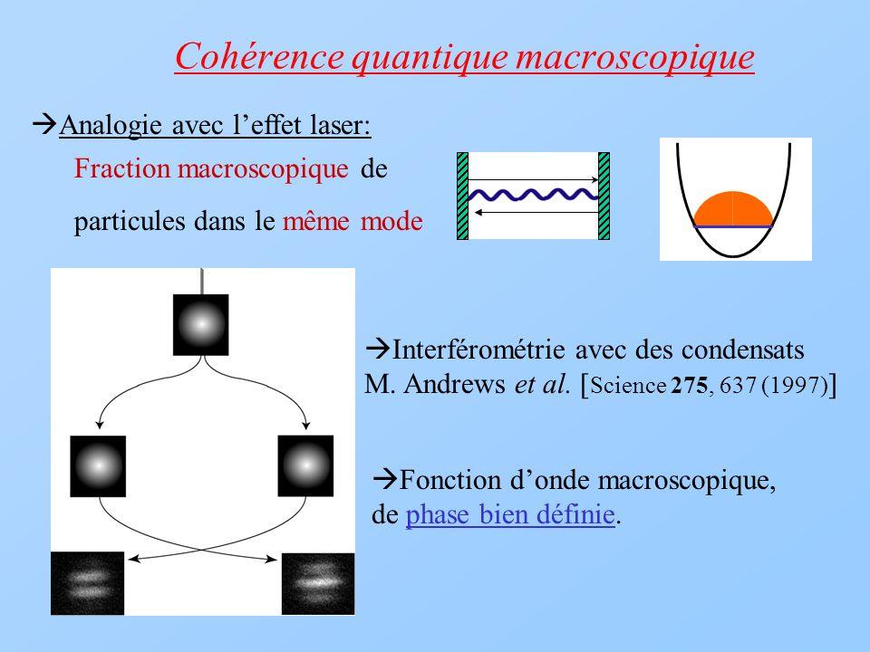 Cohérence quantique macroscopique