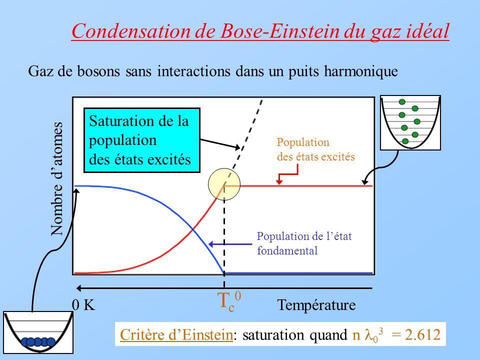 Condensation de Bose-Einstein du gaz idéal
