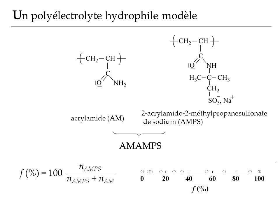 Un polyélectrolyte hydrophile modèle