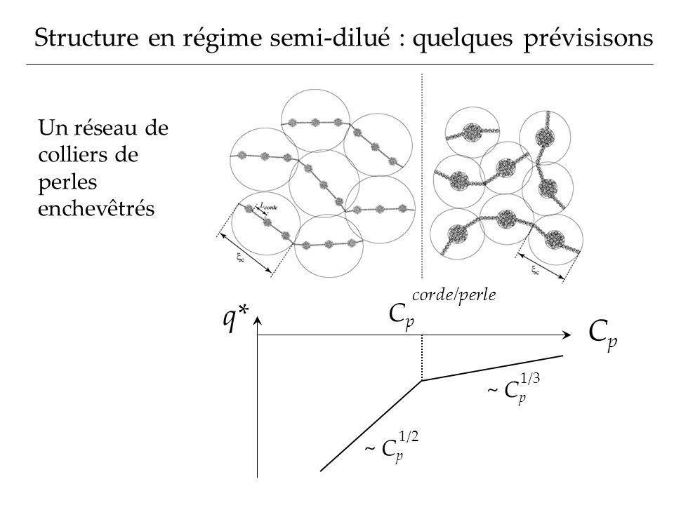 q* Cp Structure en régime semi-dilué : quelques prévisisons Cp