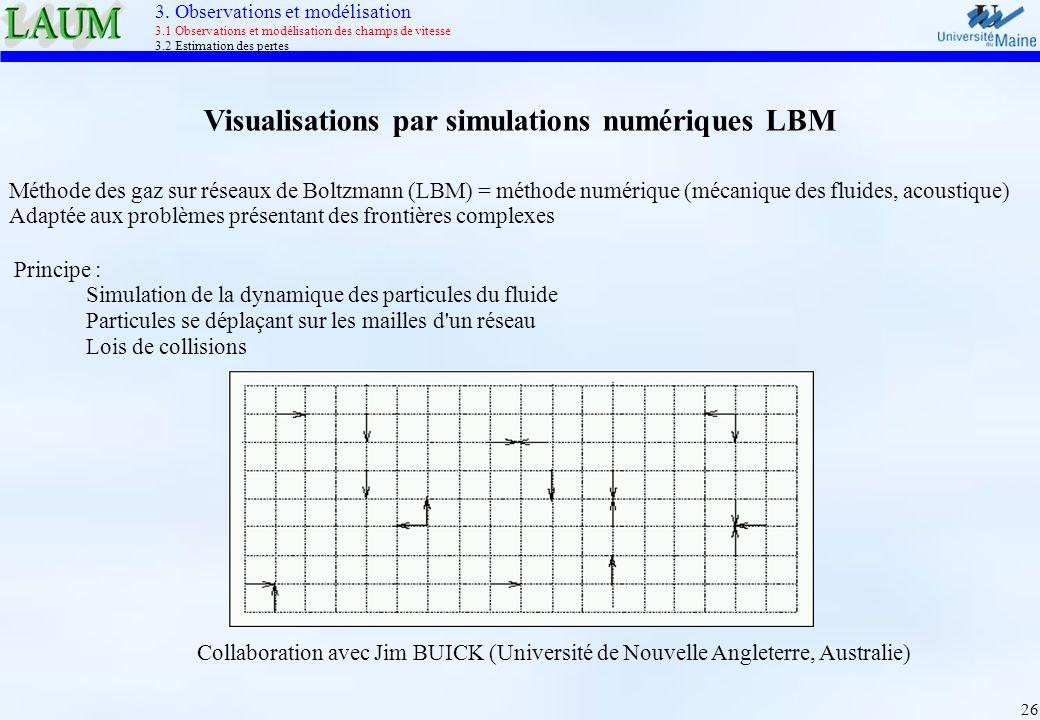 Visualisations par simulations numériques LBM