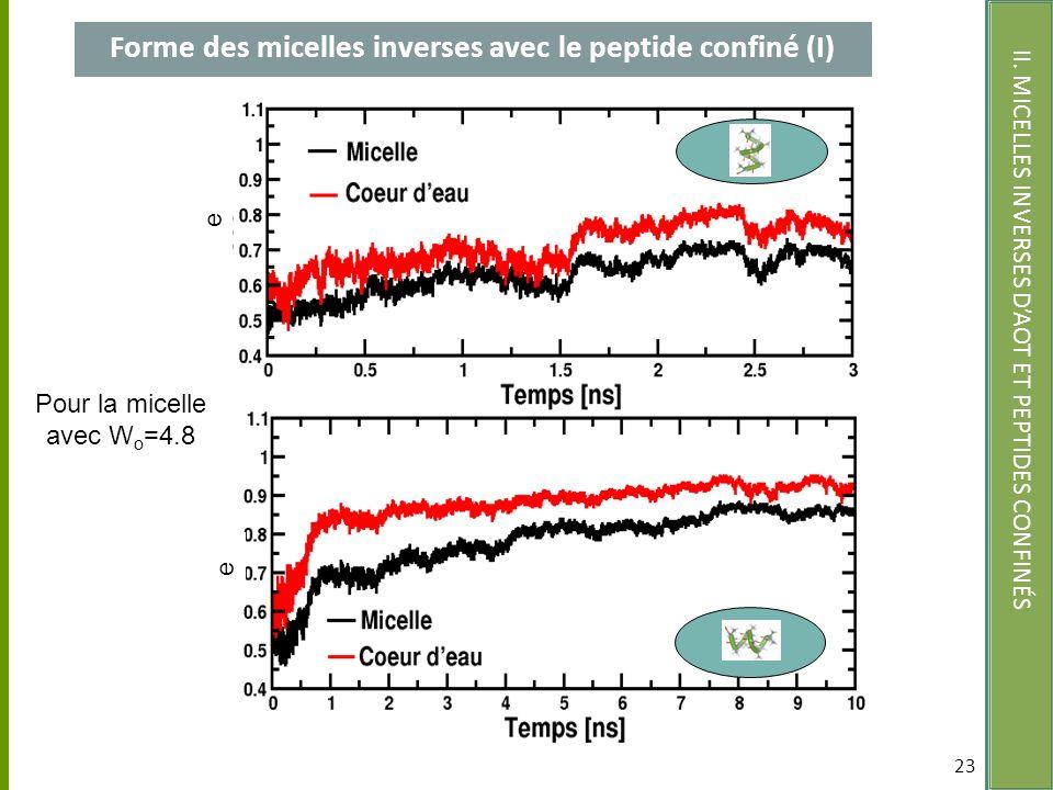 Forme des micelles inverses avec le peptide confiné (I)
