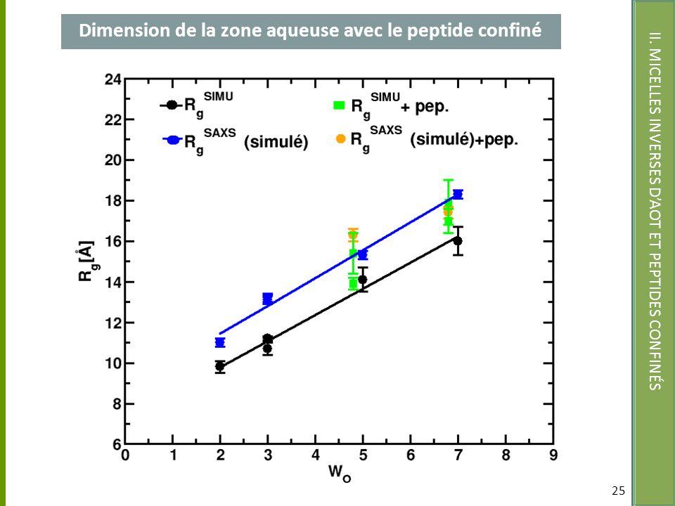 Dimension de la zone aqueuse avec le peptide confiné