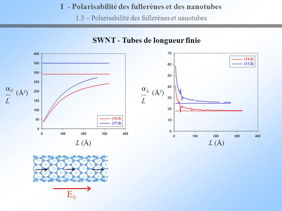 E0 I - Polarisabilité des fullerènes et des nanotubes
