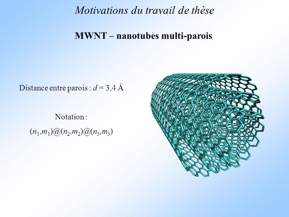 MWNT – nanotubes multi-parois