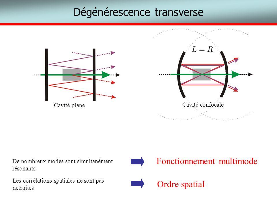 Dégénérescence transverse