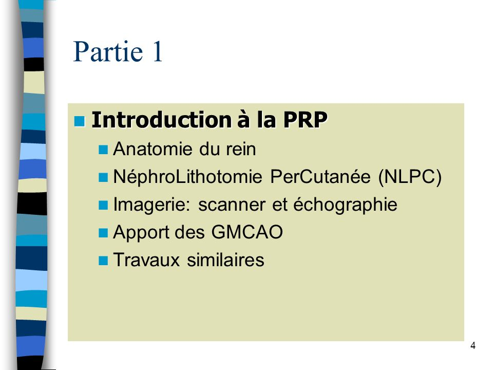 Partie 1 Introduction à la PRP Anatomie du rein