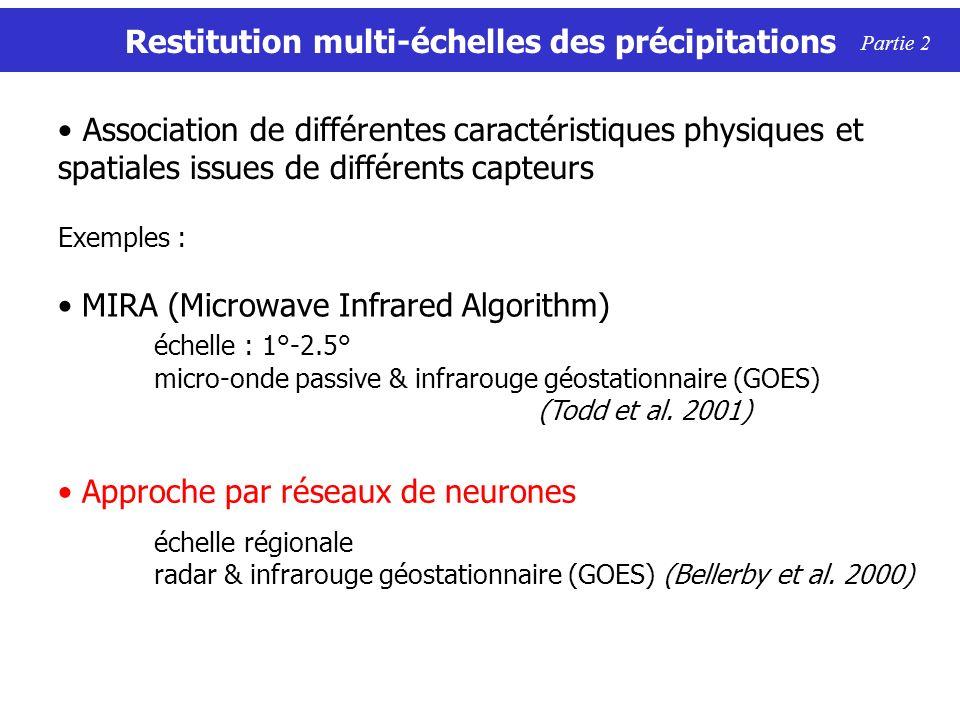 Restitution multi-échelles des précipitations