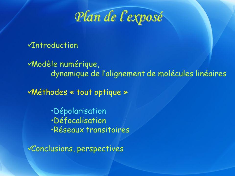 Plan de l'exposé Introduction Modèle numérique,
