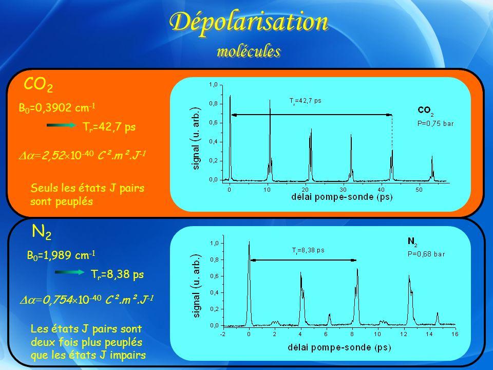 Dépolarisation molécules