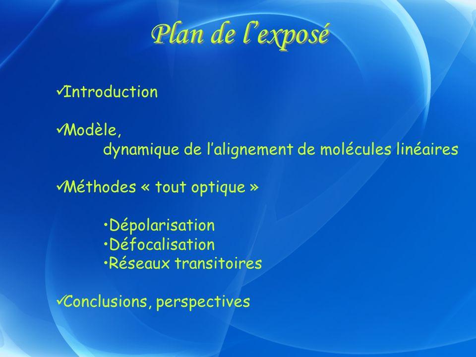 Plan de l'exposé Introduction Modèle,