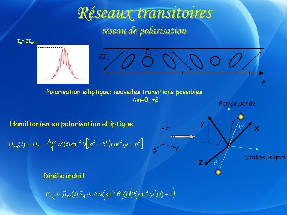 Réseaux transitoires réseau de polarisation
