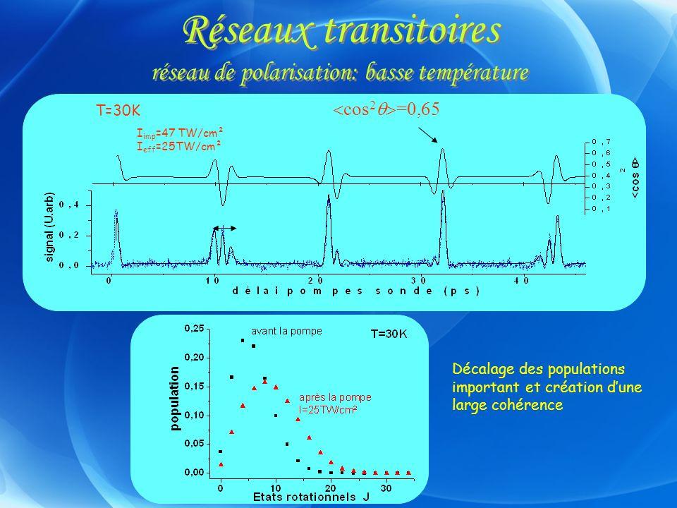 Réseaux transitoires réseau de polarisation: basse température