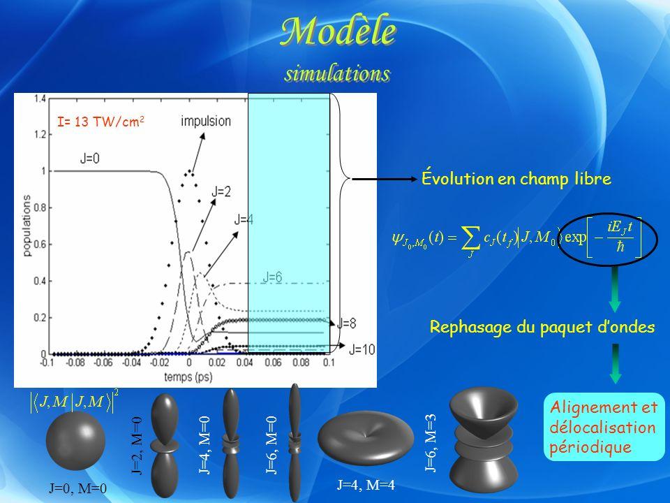 Modèle simulations Évolution en champ libre