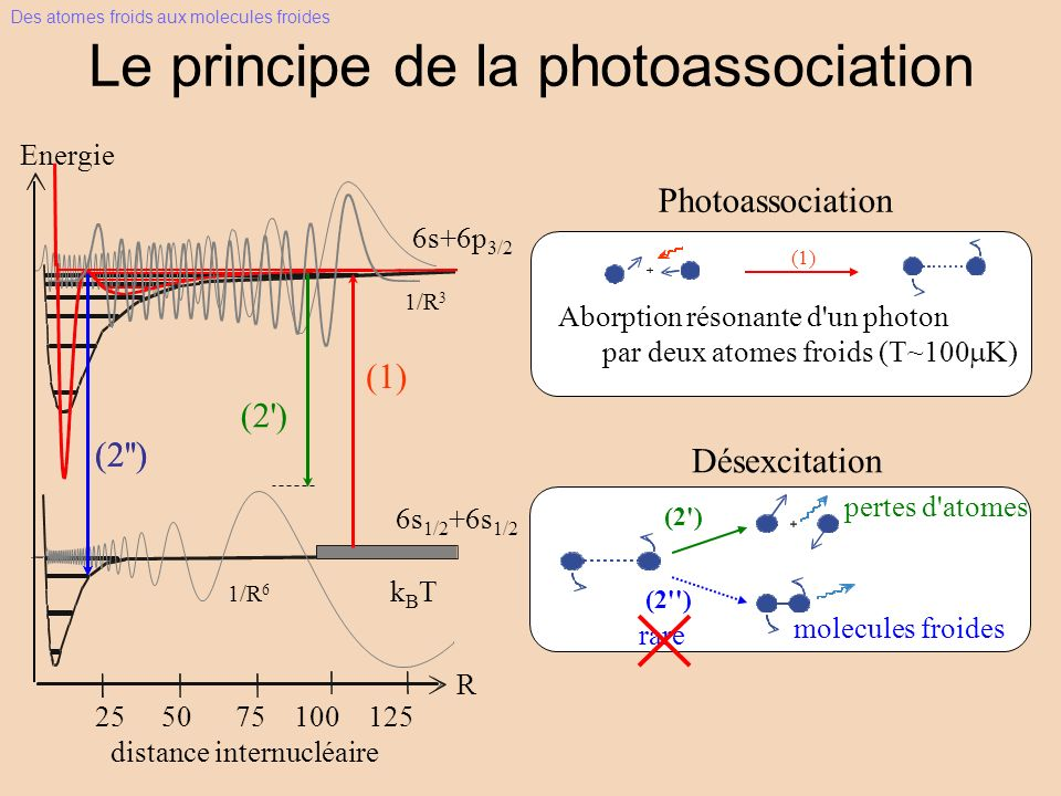 Le principe de la photoassociation