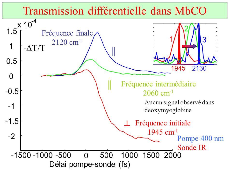 Transmission différentielle dans MbCO