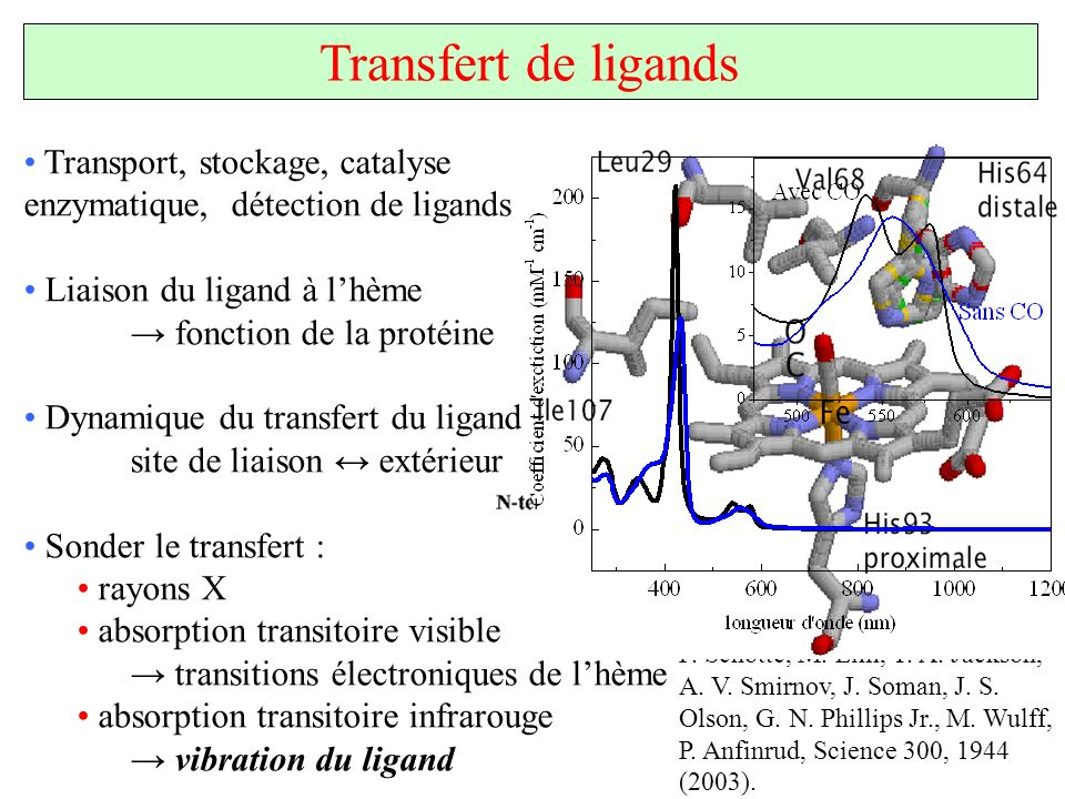 Transfert de ligands Transport, stockage, catalyse