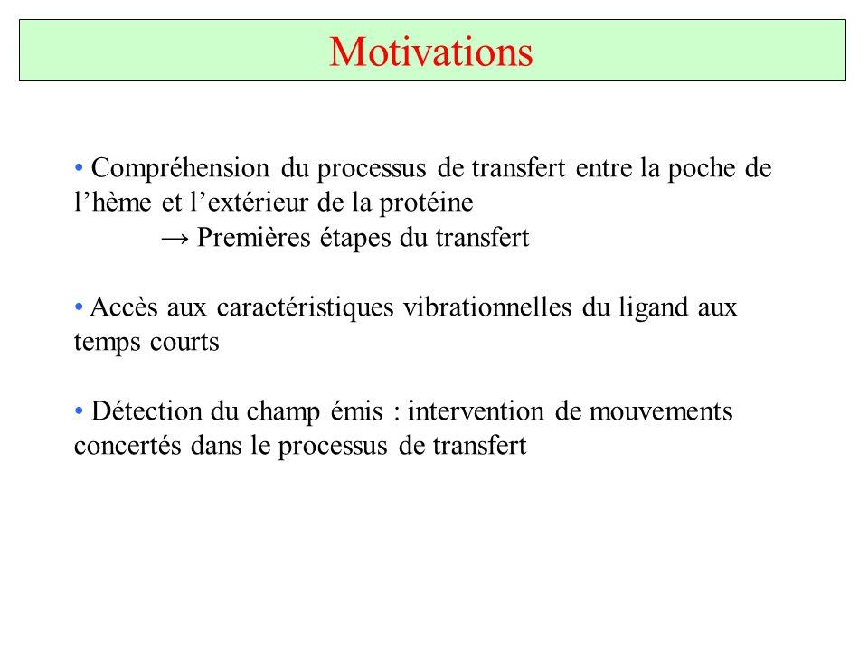 Motivations Compréhension du processus de transfert entre la poche de l'hème et l'extérieur de la protéine.
