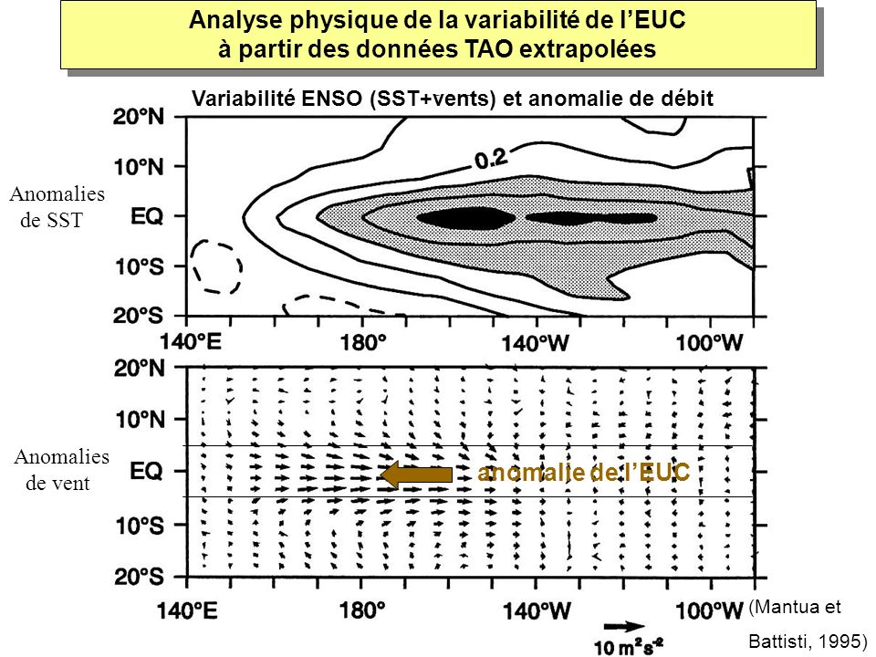 Analyse physique de la variabilité de l'EUC à partir des données TAO extrapolées