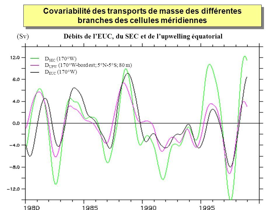 Covariabilité des transports de masse des différentes branches des cellules méridiennes