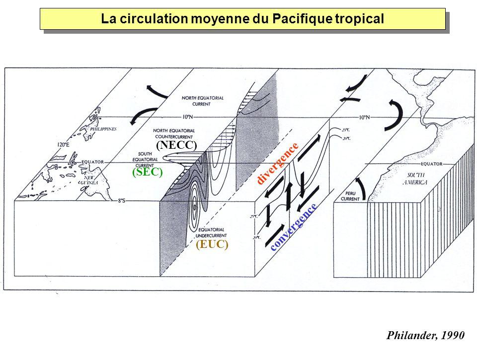 La circulation moyenne du Pacifique tropical