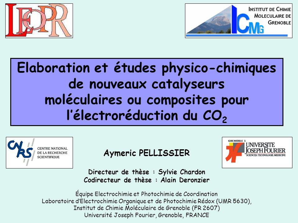 Elaboration et études physico-chimiques de nouveaux catalyseurs