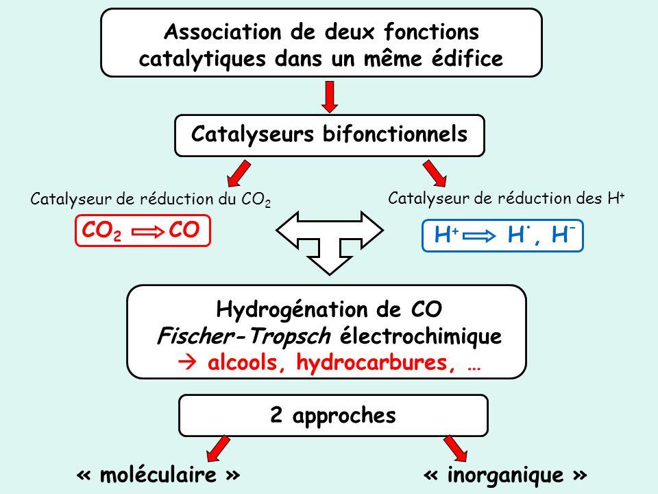 Association de deux fonctions catalytiques dans un même édifice