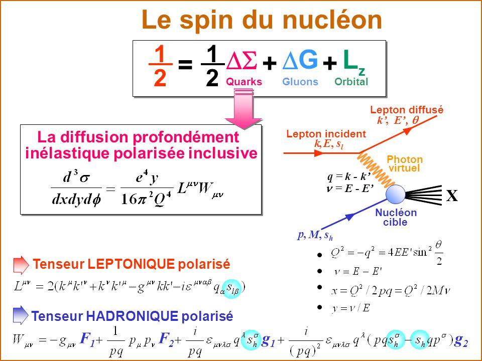 Le spin du nucléon D S + G L = 1 2 X g1 F1 F2 g2
