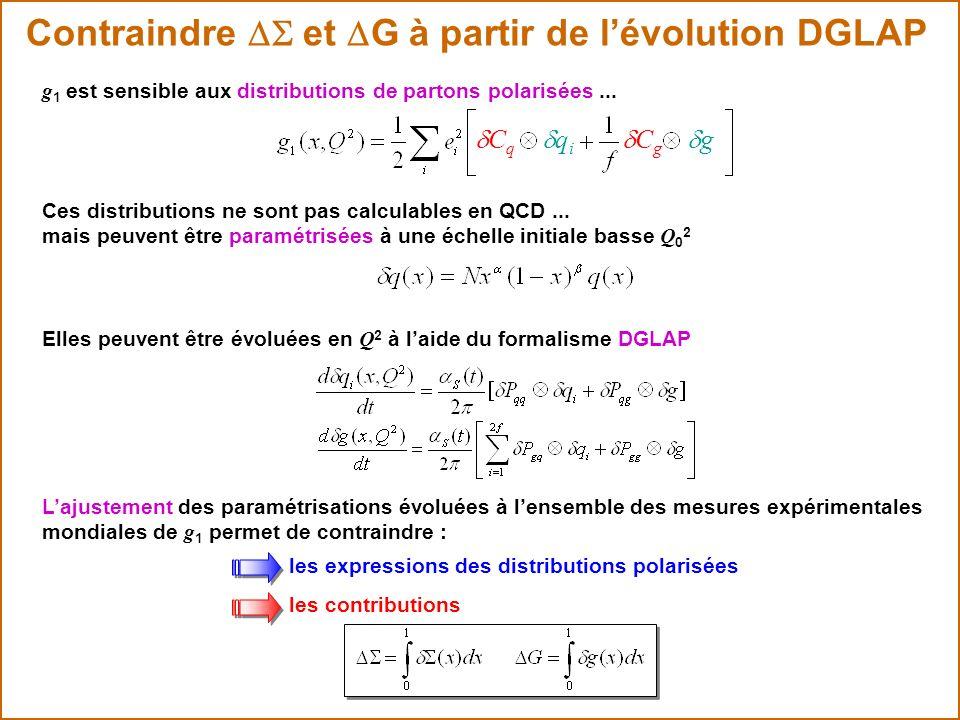 Contraindre DS et DG à partir de l'évolution DGLAP