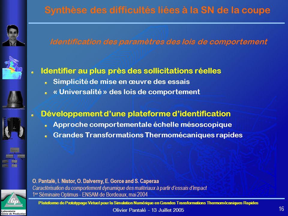 Synthèse des difficultés liées à la SN de la coupe