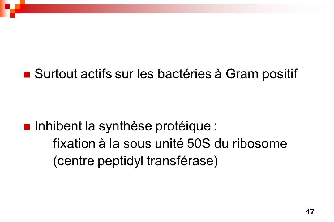 Surtout actifs sur les bactéries à Gram positif