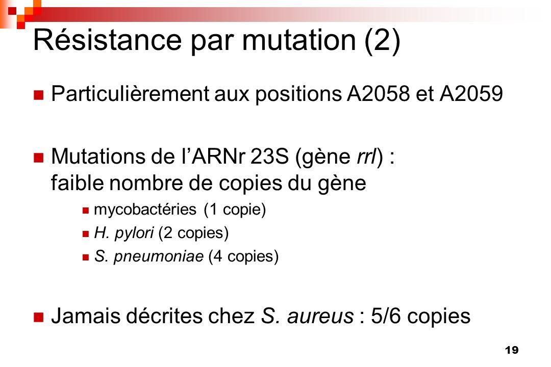 Résistance par mutation (2)