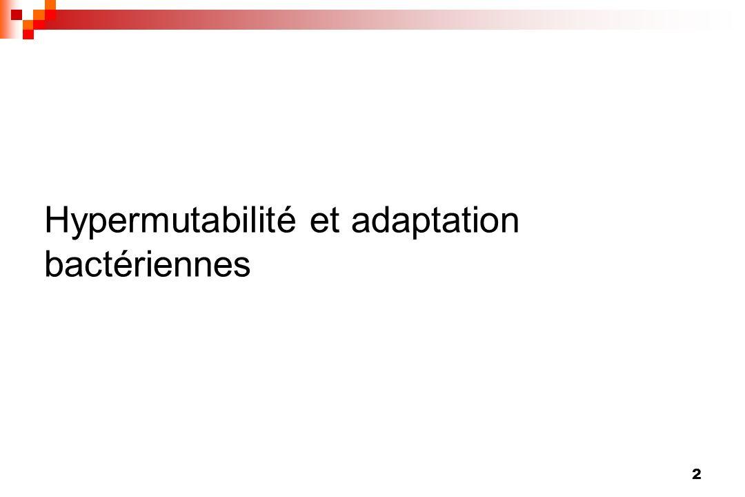 Hypermutabilité et adaptation bactériennes