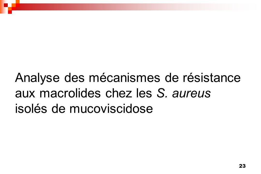 Analyse des mécanismes de résistance aux macrolides chez les S