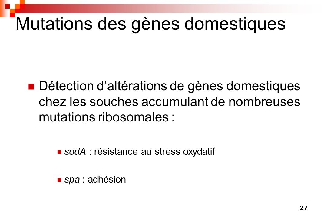 Mutations des gènes domestiques