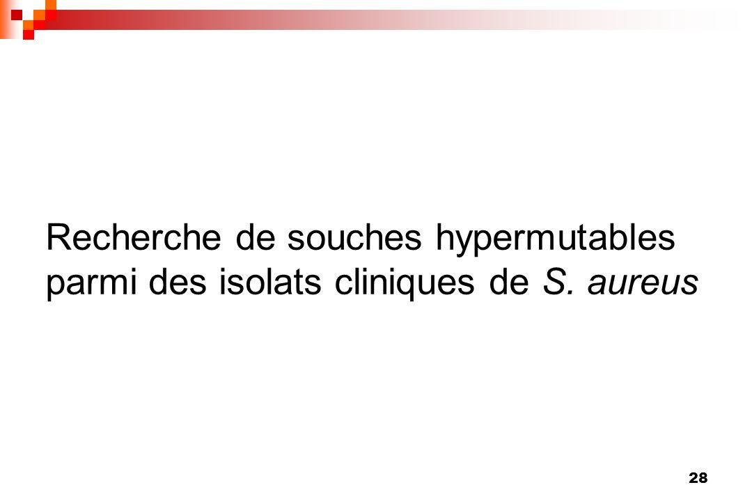 Recherche de souches hypermutables parmi des isolats cliniques de S