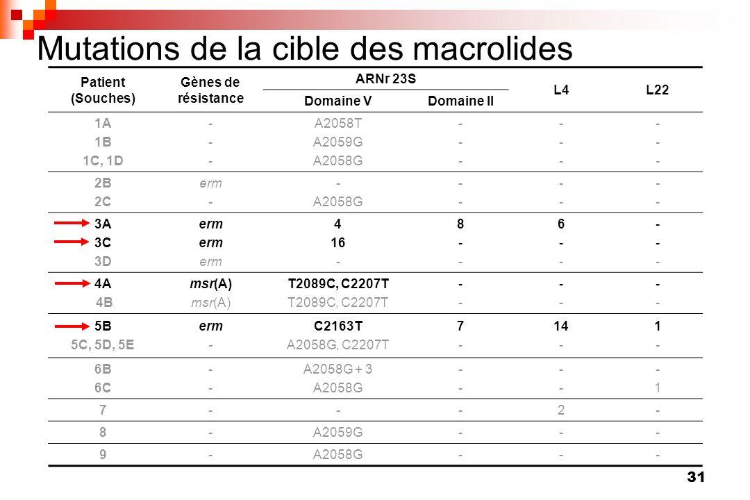 Mutations de la cible des macrolides
