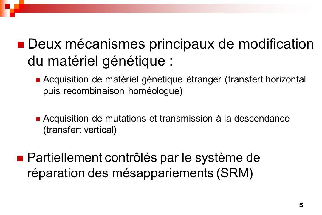 Deux mécanismes principaux de modification du matériel génétique :