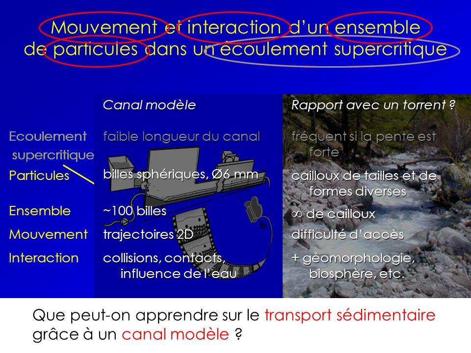 ~100 billes de cailloux. Ensemble. trajectoires 2D. Mouvement. difficulté d'accès. Interaction. collisions, contacts, influence de l'eau.