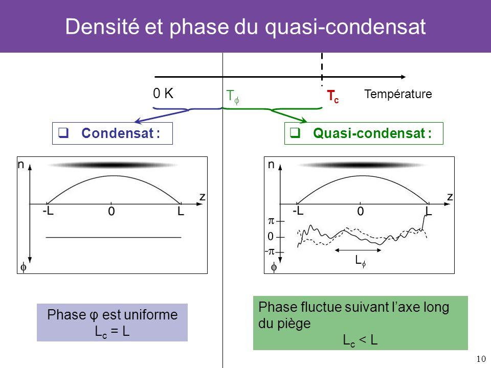 Densité et phase du quasi-condensat