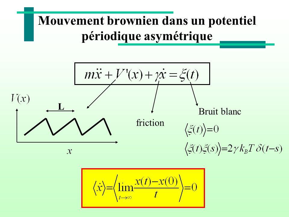 Mouvement brownien dans un potentiel périodique asymétrique