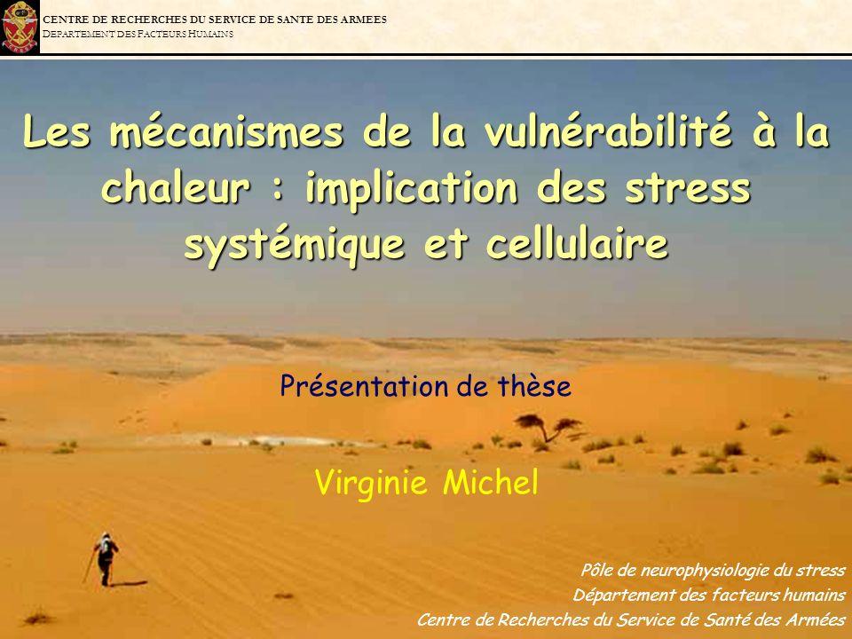 Les mécanismes de la vulnérabilité à la chaleur : implication des stress systémique et cellulaire