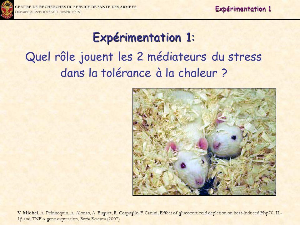 Expérimentation 1 Expérimentation 1: Quel rôle jouent les 2 médiateurs du stress dans la tolérance à la chaleur