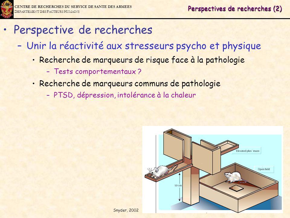 Perspectives de recherches (2)