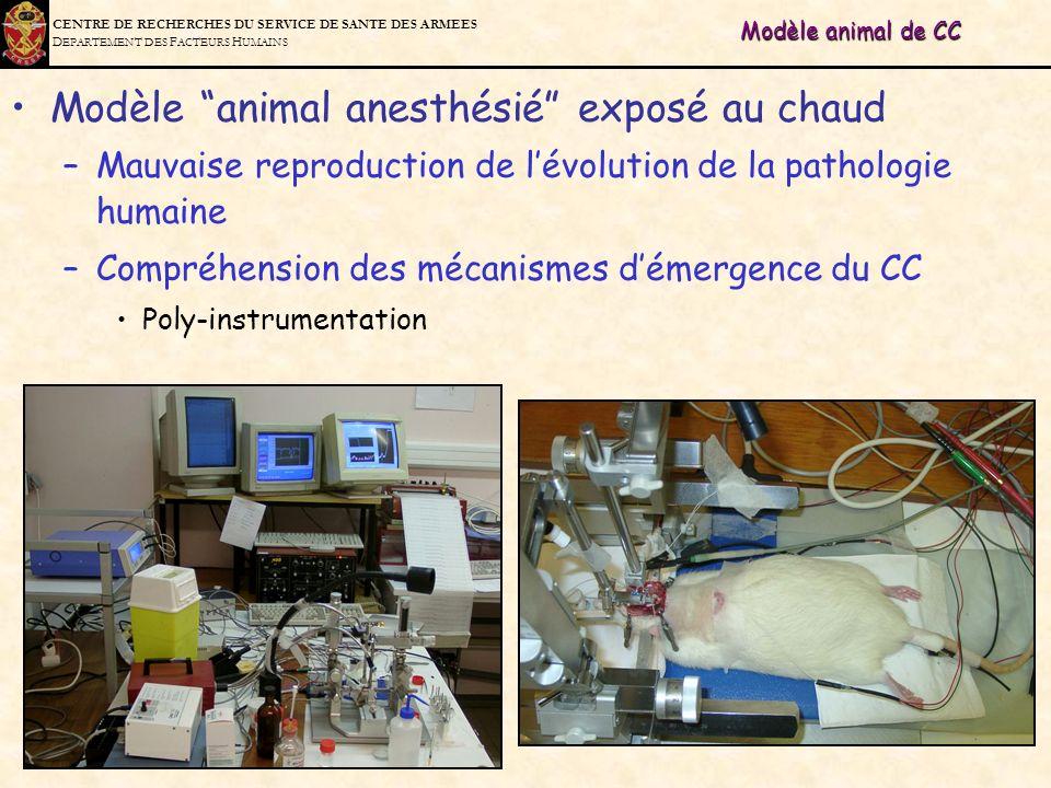 Modèle animal anesthésié exposé au chaud
