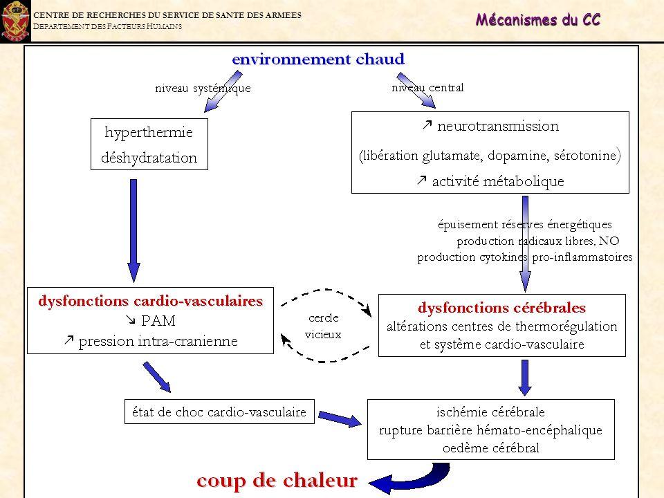 Mécanismes du CC , NO.