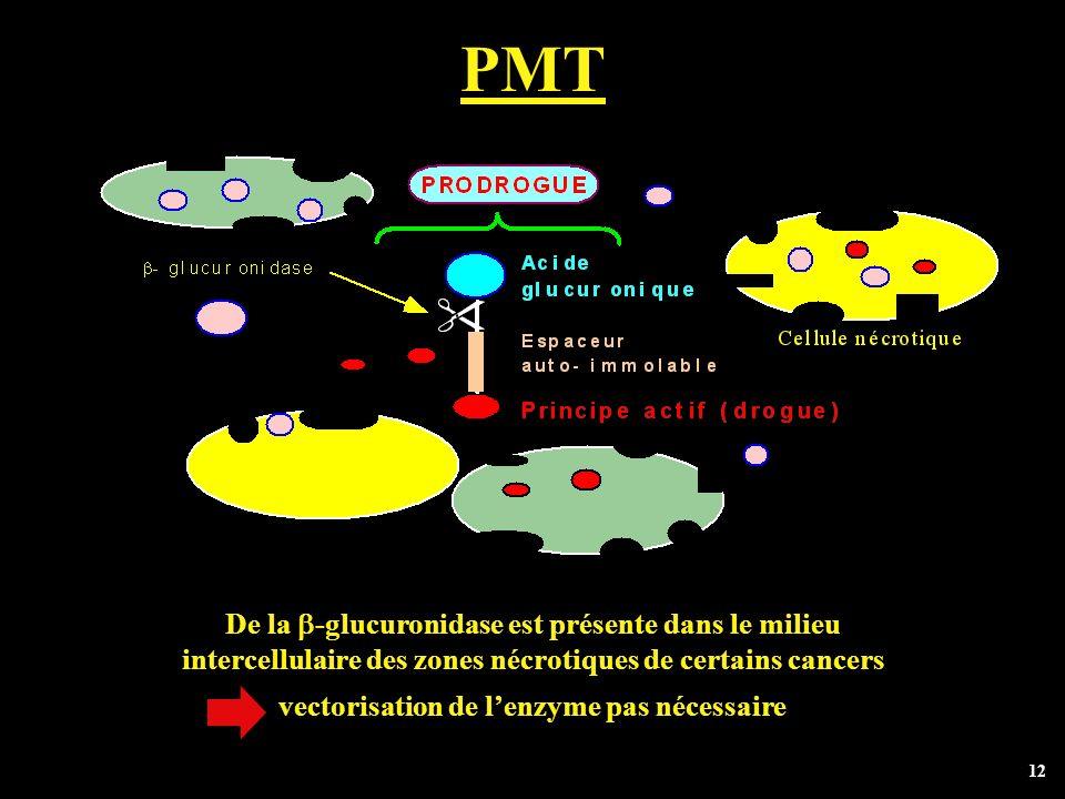 PMT De la b-glucuronidase est présente dans le milieu