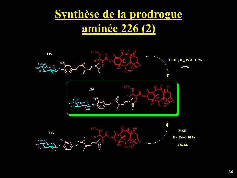 Synthèse de la prodrogue aminée 226 (2)